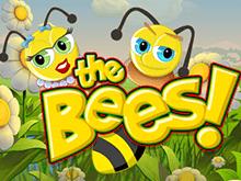 Пчелы — автомат с бонусами